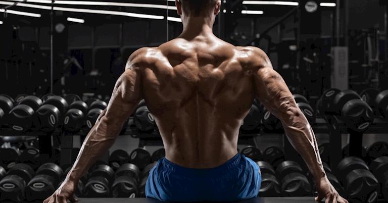 Top 5 bài tập cơ lưng xô hiệu quả hàng đầu gymer nên tham khảo