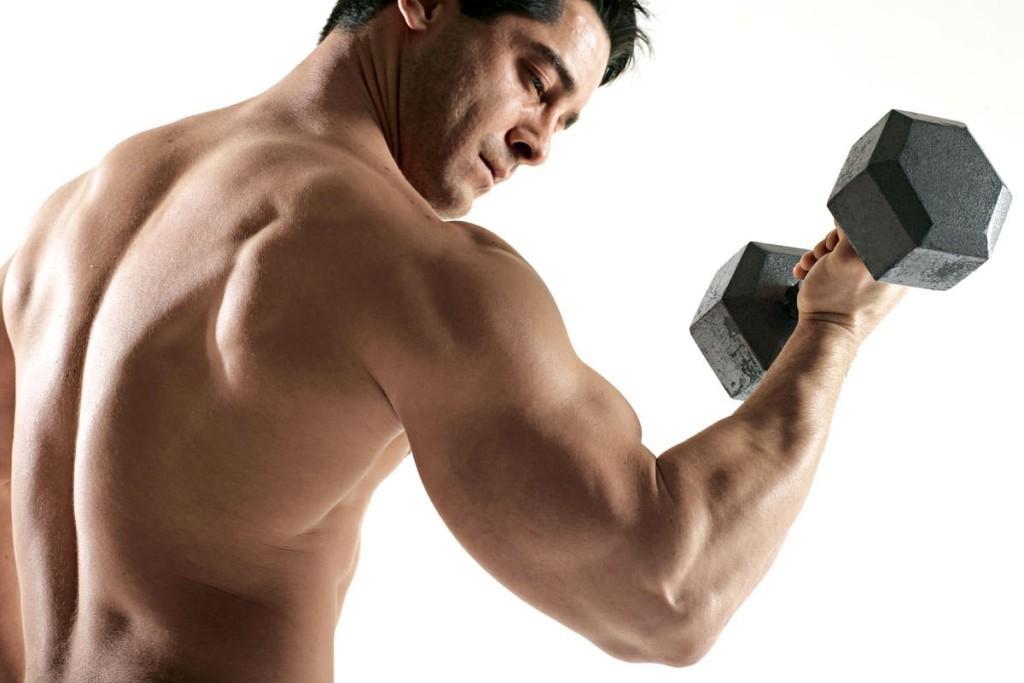 Cơ tam đầu và các bài tập gym dành cho nhóm cơ này