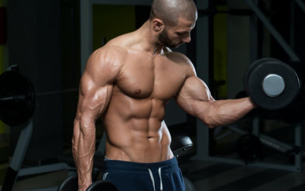 Cùng Swequity khám phá 8 bí ẩn của cơ bắp