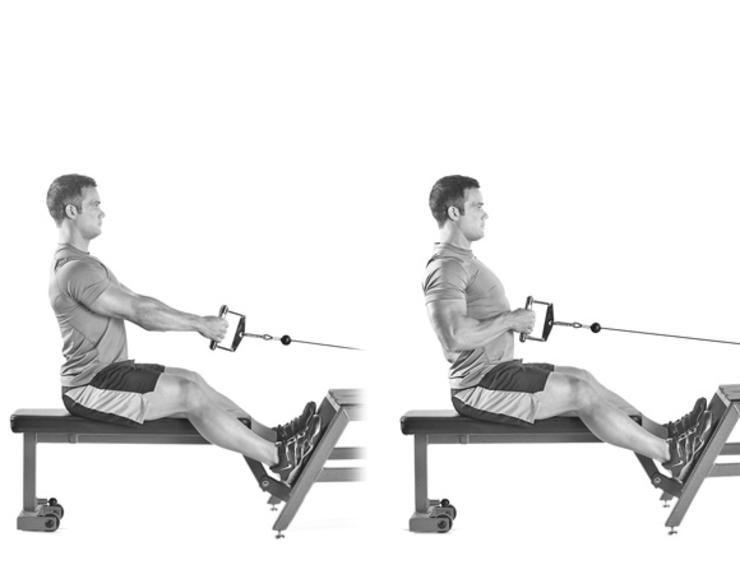 Seated Cable Row – bài tập giúp phát triển lưng giữa tốt nhất