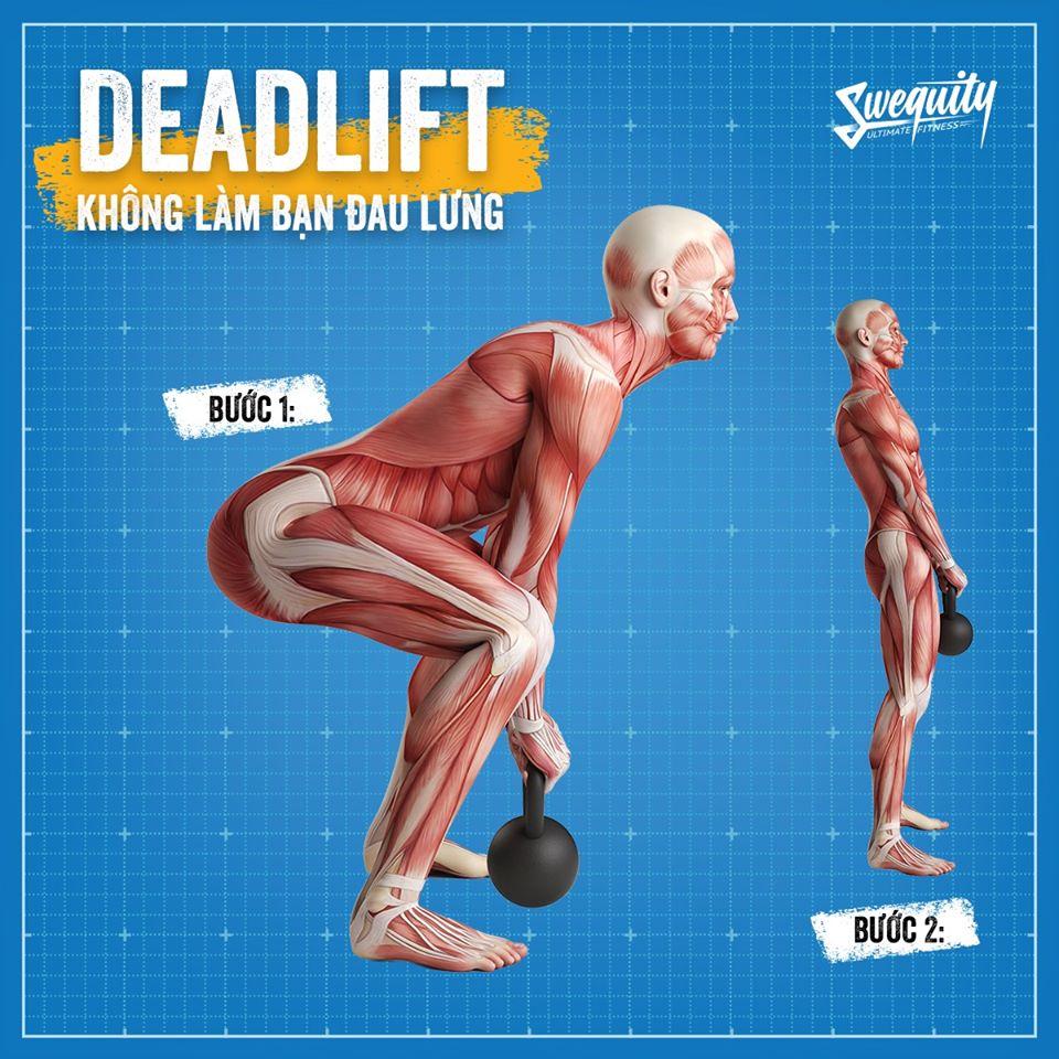 Bài tập Conventional Deadlift và cách tập chuẩn xác, không đau lưng?