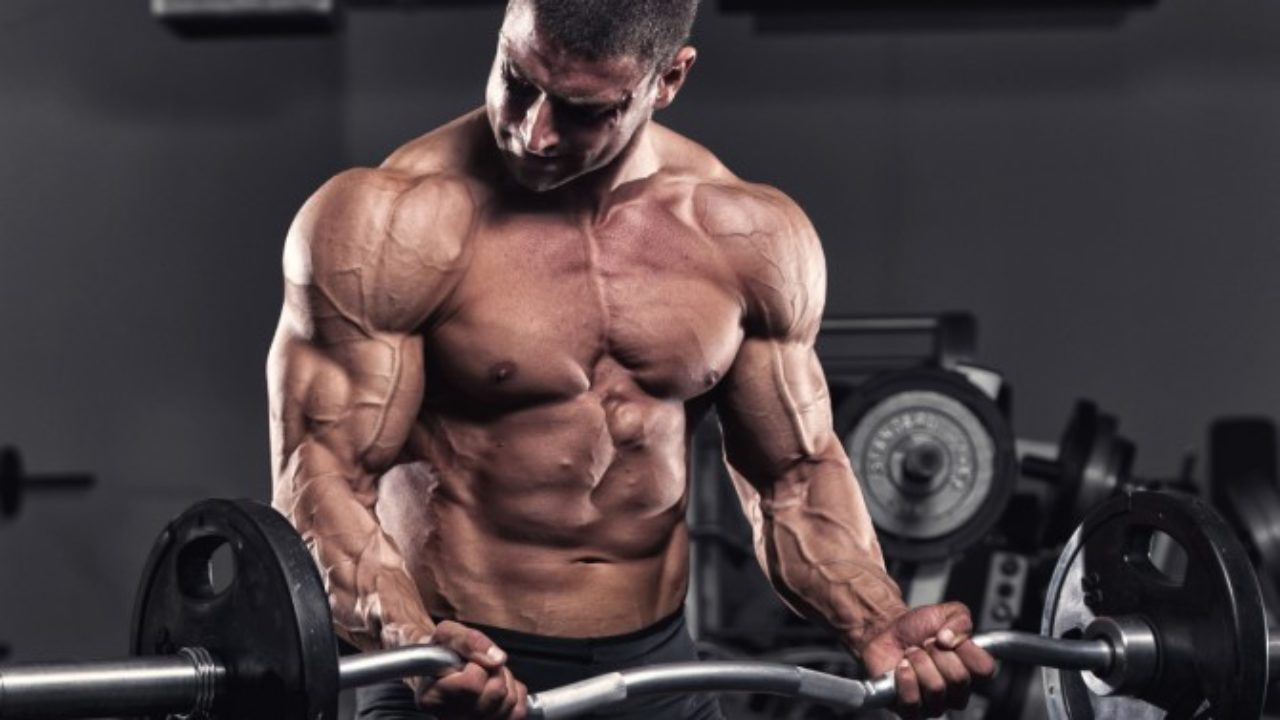 Vì sao tập tạ và tập sức mạnh là phương pháp tối ưu nhất để giảm mỡ?