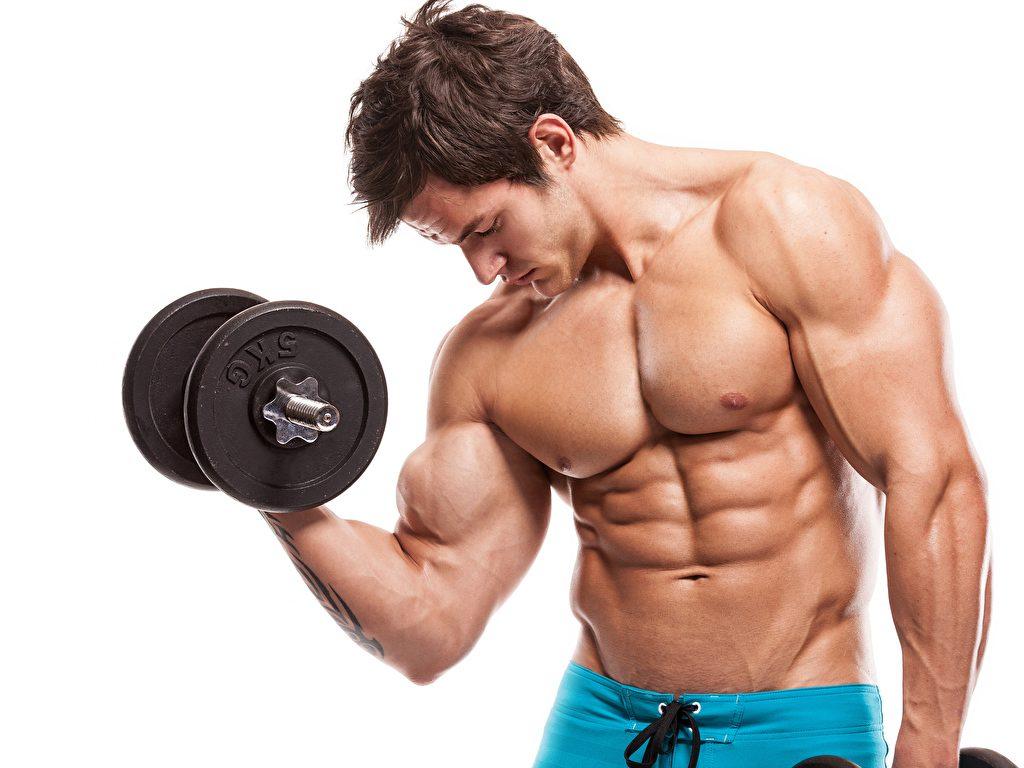 Các tips tập biceps – cơ tay trước