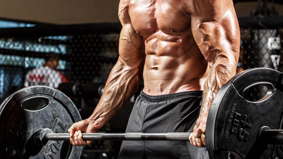 5 bài tập gym đơn giản và hiệu quả dành cho người mới tập gym